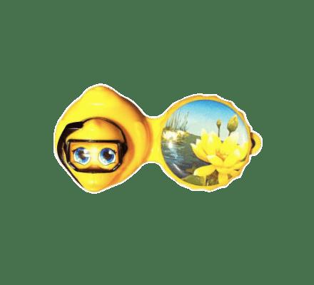 3D Récipient Lentilles de Contact Canard 1x
